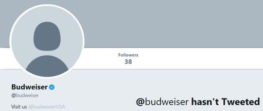 bud twit