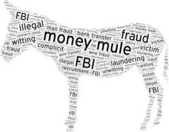 fbi mule